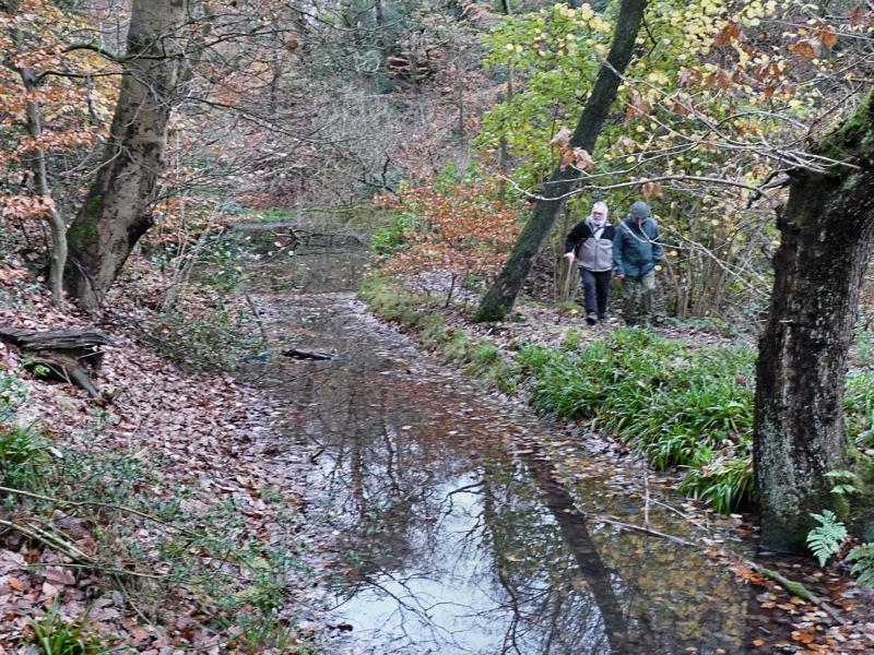 Haigh Canal1