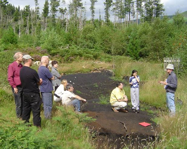 bloomery dating site Geochemical impact of a bloomery furnace tracing a bloomery in peat records with geochemical signals in central sweden philine thöle abstract the aim of this study.